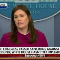 Sarah Sanders Blasts Liberal Reporter Over Trump's Response to Russian Trolls Interfering in 2016 Election (VIDEO)