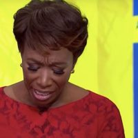 Joy Reid Backs Out Of Speaking Event And Is Suspended By Liberal Publication Over Homophobic Posts