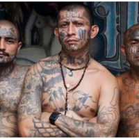 Liberal Writer Would Rather See Daughter Date MS-13 Gangbanger Over Republican