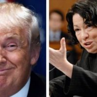 REPORT: POTUS Trump Privately Predicts He Will Appoint 4 Supreme Court Justices – ZINGS SOTOMAYOR