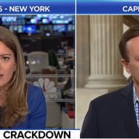 MSNBC's Katy Tur To Dem Senator: 'So You're Saying President Trump Is A Terrorist' (VIDEO)