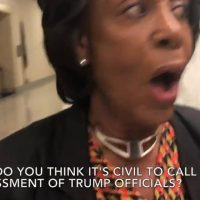 WATCH: Laura Loomer Confronts Maxine Waters
