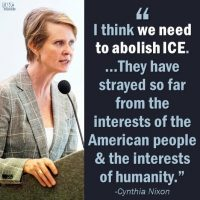 It Begins… NY Democrat Candidate for Governor Calls ICE a 'Terrorist Organization' and Wants to Abolish It