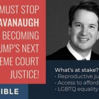 Indivisible vs. Trump, Immigration and Kavanaugh