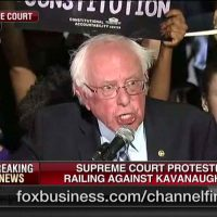 Confused Leftists Protest Future Supreme Court Justice They Never Heard Of