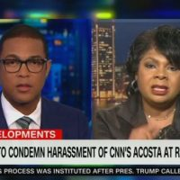 CNN Hack April Ryan: Jim Acosta's Life 'Was in Jeopardy' at Florida Trump Rally