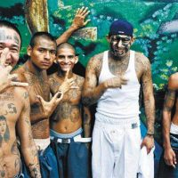 PELOSI'S ANGELS: Two MS-13 Members Charged with Murder – Dozens More Charged with Assault in Mendota