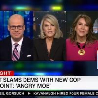 CNN's Don Lemon Shouts Down Guest For Calling Leftists A Mob: 'Shut Up!' (VIDEO)
