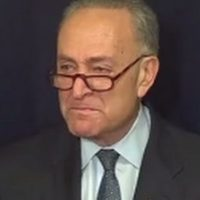 BAD DAY FOR SCHUMER: Stock Market Bounces Back