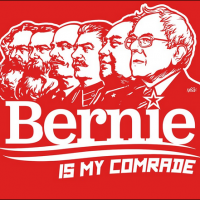 'Genuine' socialists dismiss Bernie Sanders as 'reliable instrument' for ruling class