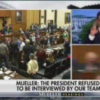 Chris Wallace: Mueller Hearing a Disaster for Democrats, Performance Raises Question if Mueller Was in Charge of His Investigation (VIDEO)