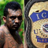 19 of 22 MS-13 Gang Members Indicted for National Forest Rampage Are Illegal Aliens