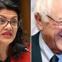 Foul-Mouthed Muslim Congresswoman Rashida Tlaib Endorses Bernie Sanders for President