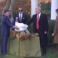 "President Trump Pardons National Thanksgiving Turkey ""Butter"" – Cracks Impeachment Joke, Zings Schiff (VIDEO)"