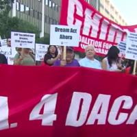 Koch Organizations Push Illegal Alien Art Propaganda in Support of Obama's DACA