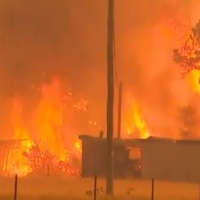 Police Working on Premise that Arsonists Started Bushfires in Australia – 200 People Arrested So Far – 85% of Fires Blamed on Humans