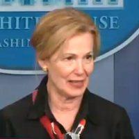 Dr. Deborah Birx Calls On Media To Stop Spreading Hysteria About Ventilators And Hospital Beds (VIDEO)