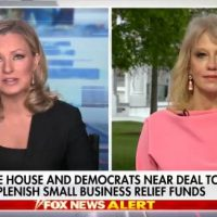 Kellyanne Conway Slams Governor Who Has 'Physically Distanced From Common Sense,' Says in Michigan 'You Can Smoke Your Grass, But Not Cut Your Grass'