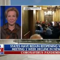 "Dr. Birx Says Anti-Lockdown Freedom Protesters in Michigan are ""Devastatingly Worrisome"" (VIDEO)"