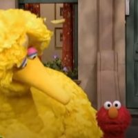 CNN Virtual Town Hall On Racism To Feature Noted Experts Big Bird And Elmo