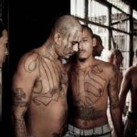 Trump Announces Massive MS-13 Bust, Key Gang Leader Charged With Terrorism-Related Offenses