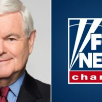 SHAMEFUL: Fox News Censors Newt Gingrich for Correctly Stating George Soros' Role in Fomenting BLM Terror