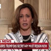 Kamala Harris, Who Falsely Accused Biden of Racism, Now Falsely Accuses Trump