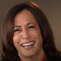 NY Times Already Calling For Kamala Harris To Have A 'More Important Job' Than Vice President