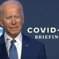 Biden to Push Illegal Alien Amnesty, Quick Voting for Illegals
